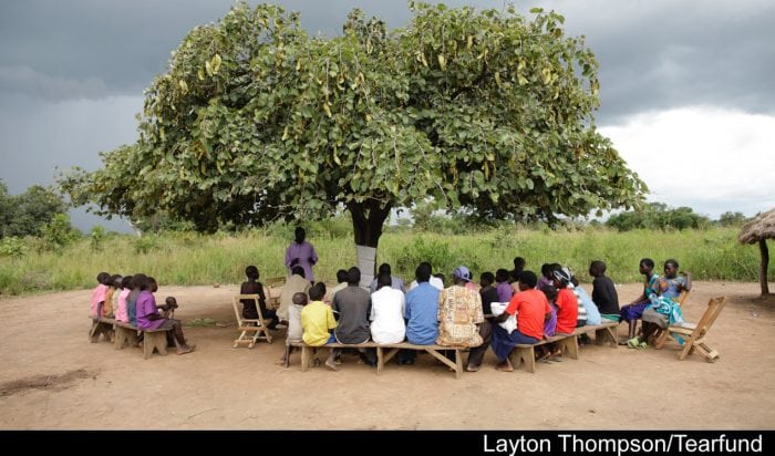 PAG-Uganda-Mango-tree-crop3-copy-700x412